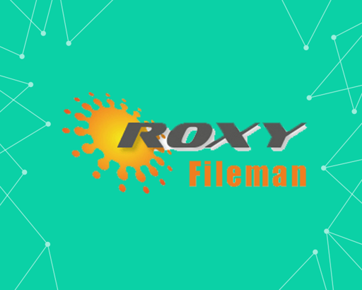 Picture of Roxy FileMan Performance Fix